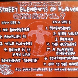 Wayne Rollins - Street Elements Of Flavor - Ghetto Style Vol. 2 - Cutting Records - CR-399