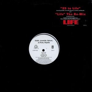 Xzibit , Juvenile , Nature , Ja Rule & Reptile / K-Ci & JoJo - 25 To Life / Life (Re-Mix) - Interscope Records - INT8P-6549, Rock Land Records - INT8P-6549