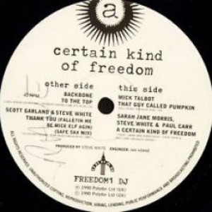 Various - A Certain Kind Of Freedom - Polydor - FREEDOM1 DJ