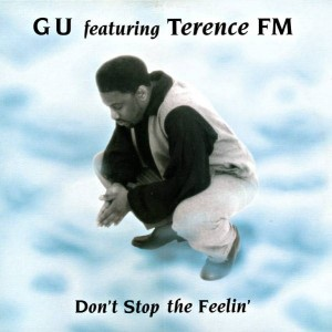 Glenn Underground Featuring Terence FM - Don't Stop The Feelin' - Cajual Records - CAJ 250