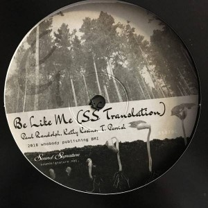 Theo Parrish , Paul Randolph , Kathy Kosins , John Douglas , Amp Fiddler , Ideeyah - Gentrified Love Part 4 - Sound Signature - SS070