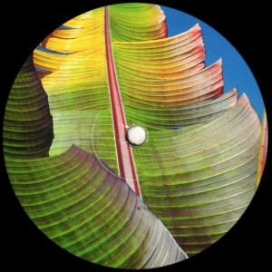 Kieran Hebden - Only Human - Text Records - TEXT 048